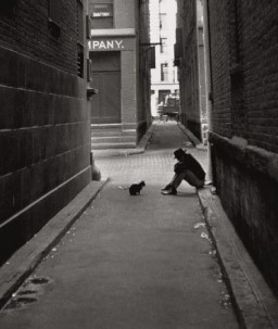 miag profil fotoğrafı