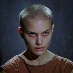 lilyum profil fotoğrafı